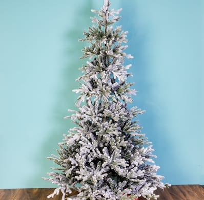 6' Frosted Glenallen Spruce
